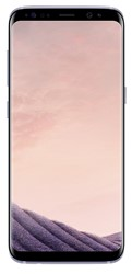 Picture of Samsung Galaxy S8  Orchid Grey